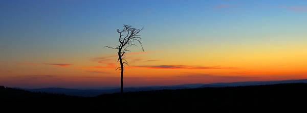 Photograph - Twilight by Gavin Macrae