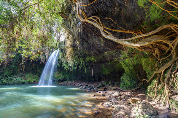 Photograph - Twin Falls Wilderness by Pierre Leclerc Photography