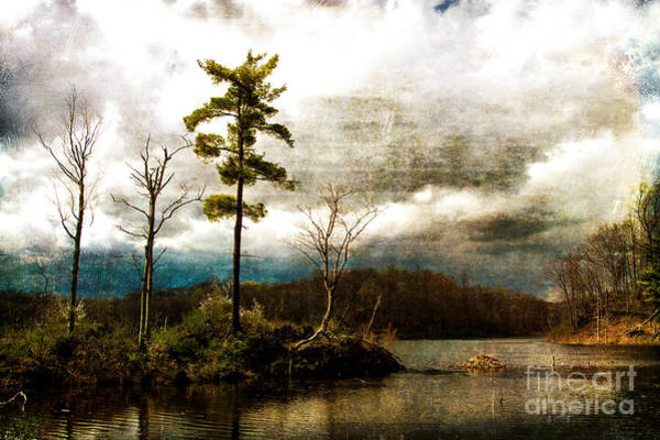 Photograph - Twin Lakes At Kittatiny State Park by Eleanor Abramson