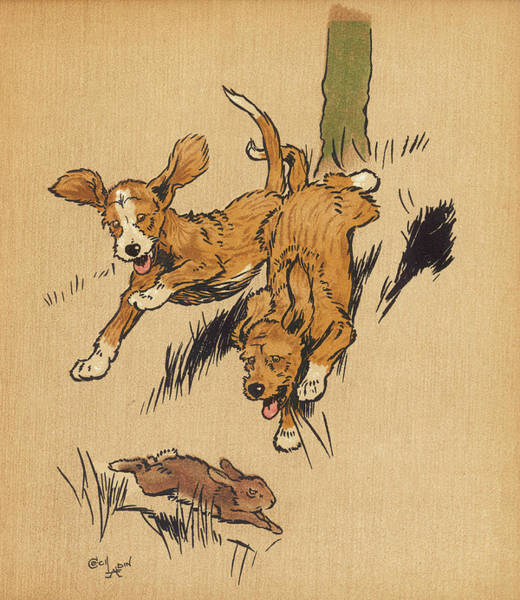 Pup Drawing - Twin Puppies, Snip And Snap, Attempt by Mary Evans Picture Library