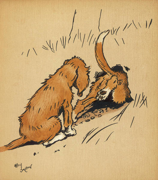 Pup Drawing - Twin Puppies, Snip And Snap,  Bravely by Mary Evans Picture Library