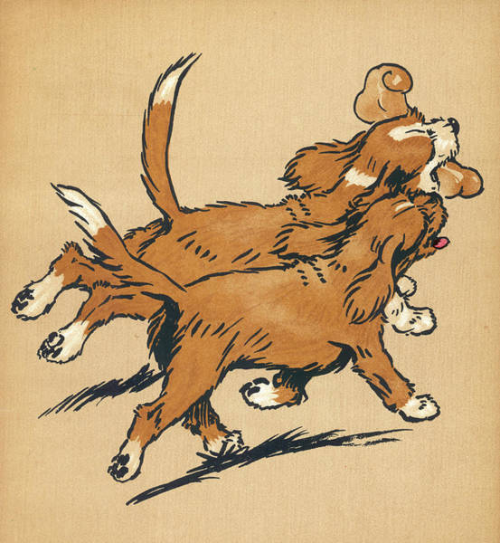 Wall Art - Drawing - Twin Puppies, Snip And Snap, Head Home by Mary Evans Picture Library