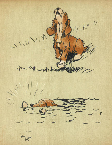 Wall Art - Drawing - Twin Puppy Snip Falls Into The Water by Mary Evans Picture Library