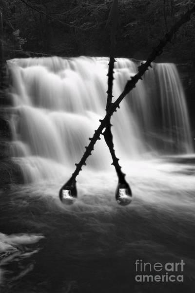 Photograph - Twin Reflections by Dan Friend