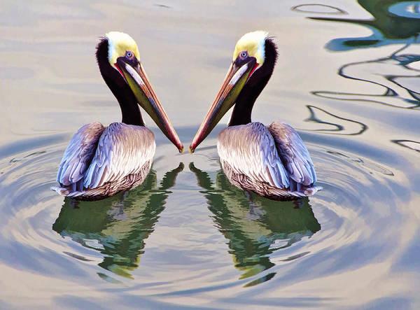 Ensenada Photograph - Twins by Claude LeTien