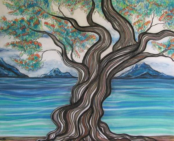 Pohutukawa Drawing - Twisted Tree by Joan Stratton