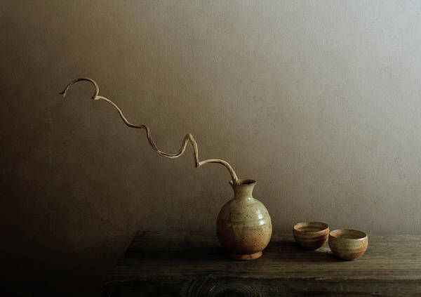 Vases Photograph - Twists by Margaret Halaby