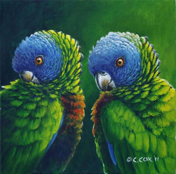Painting - Two - St Lucia Parrots by Christopher Cox