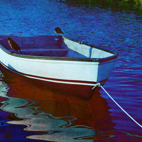 Dinghies Photograph - Delphin Squared by Laura Fasulo