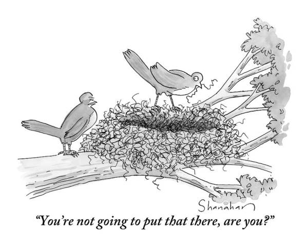 Media Drawing - Two Birds Are Seen In A Nest In A Tree by Danny Shanahan