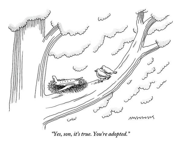 Airplane Drawing - Two Birds On A Tree Branch Speak To A Small Plane by Mick Stevens