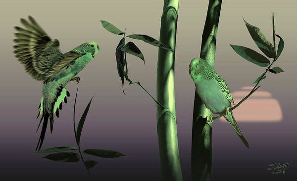 Bamboo Digital Art - Two Budgerigars In Bamboo Tree by M Spadecaller