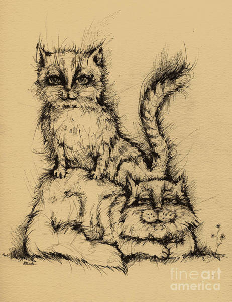 Pussycat Drawing - Two Cats by Angel Ciesniarska