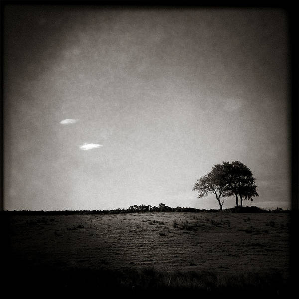 Iphoneography Wall Art - Photograph - Two Clouds And A Tree by Dave Bowman