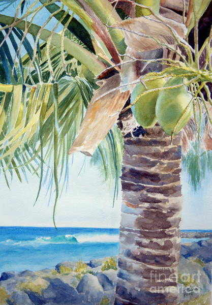 Coconut Painting - two coconuts -SOLD by Lisa Pope