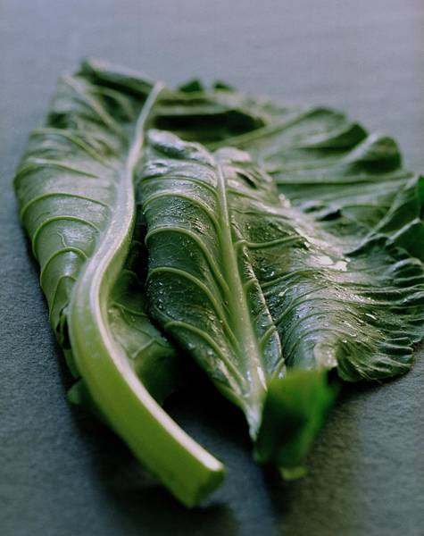 Kale Photograph - Two Collard Leaves by Romulo Yanes