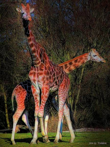 Painting - Two Colorful Giraffes  by Jon Volden