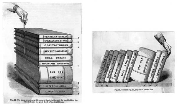Wall Art - Drawing - Two Diagrams To Explain  Stratification by Mary Evans Picture Library