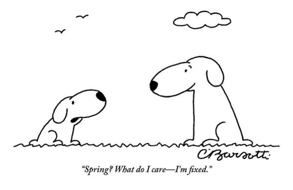 Care Drawing - Two Dogs Are Seen Talking To Each Other by Charles Barsotti