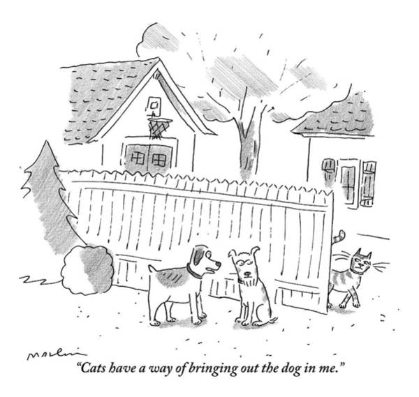 Suburb Drawing - Two Dogs Are Speaking With A Cat Walking Near By by Michael Maslin
