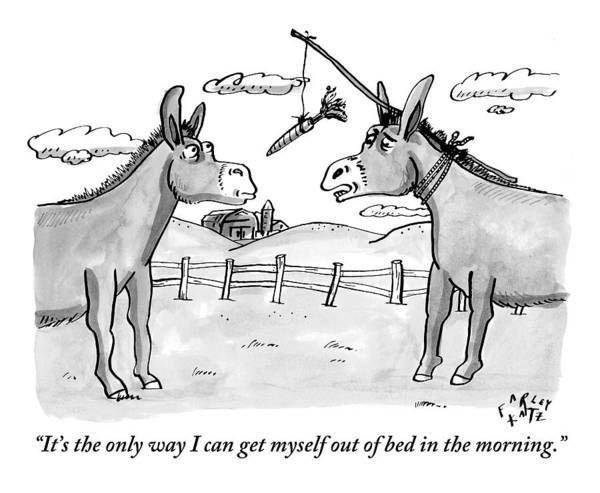 Morning Drawing - Two Donkeys Are Seen Talking To Each Other by Farley Katz