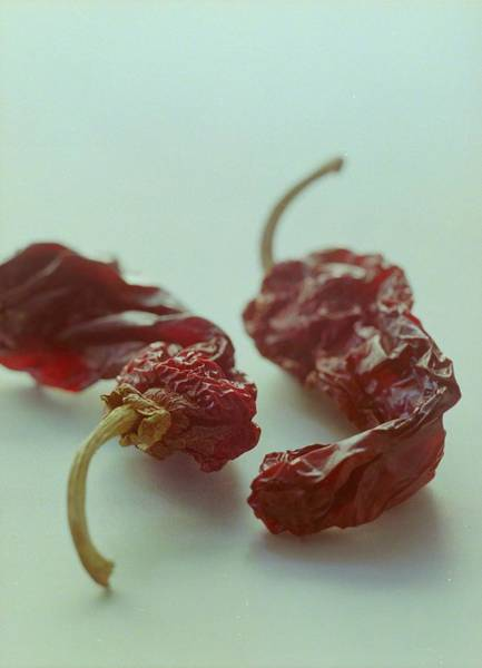2005 Photograph - Two Dried Peppers by Romulo Yanes