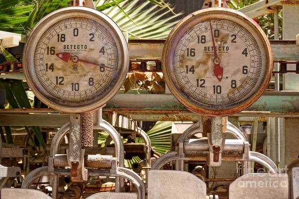 Photograph - Two Farm Scales by Kerri Mortenson