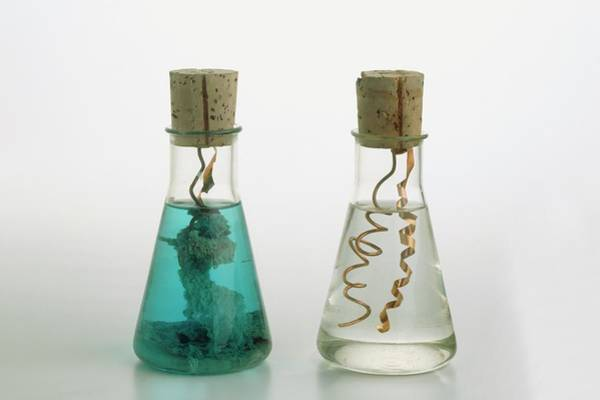 Wall Art - Photograph - Two Glass Flasks Of Copper Coils by Dorling Kindersley/uig