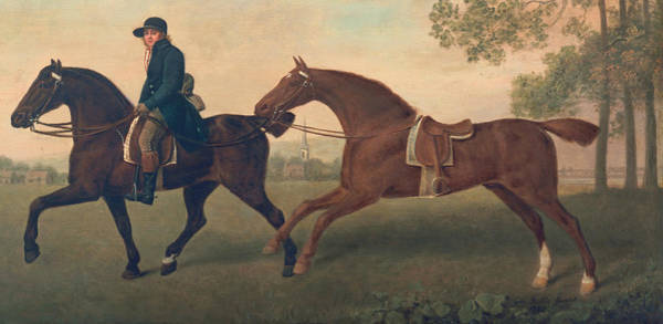 Chestnut Horse Painting - Two Hacks by George Stubbs