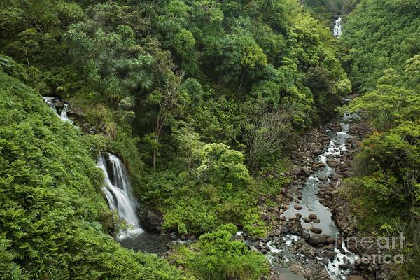 Photograph - Two Hawaii Waterfalls by Charmian Vistaunet