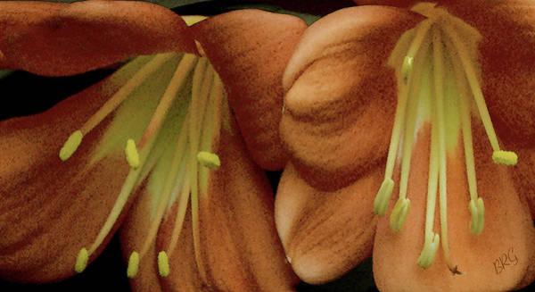 Clivia Wall Art - Photograph - Two Lilies Closeup by Ben and Raisa Gertsberg