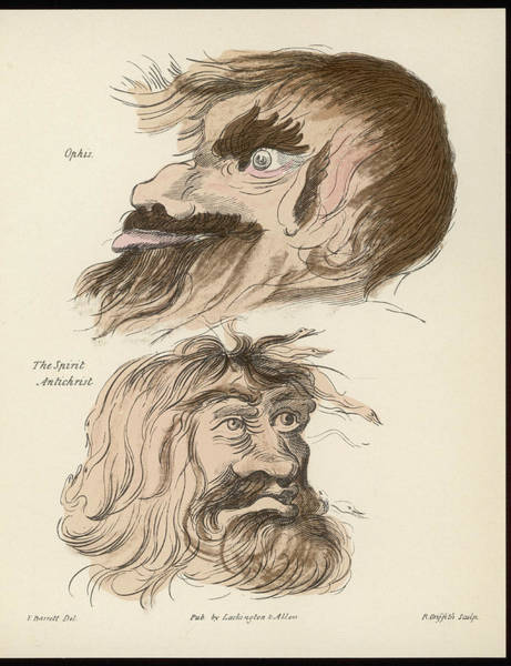 Folklore Drawing - Two Malevolent Beings - Ophis by Mary Evans Picture Library