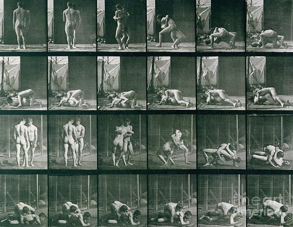 Sequence Photograph - Two Men Wrestling by Eadweard Muybridge