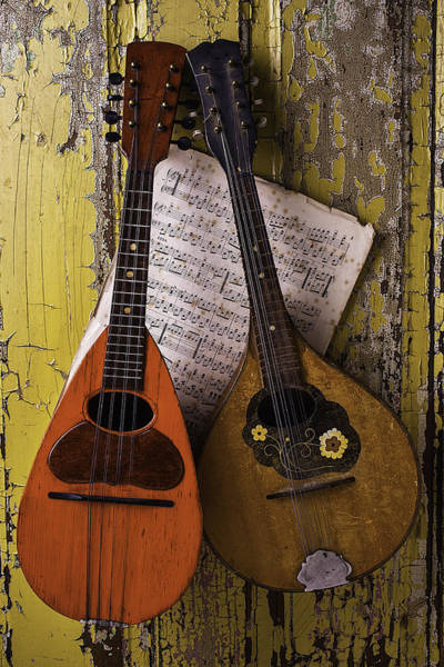 Hand Painted Photograph - Two Old Mandolins by Garry Gay