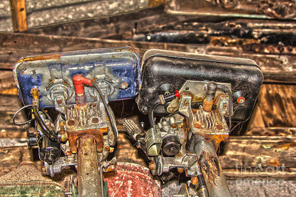 Outboard Engine Photograph - Two Old Seagulls  by Brian Roscorla