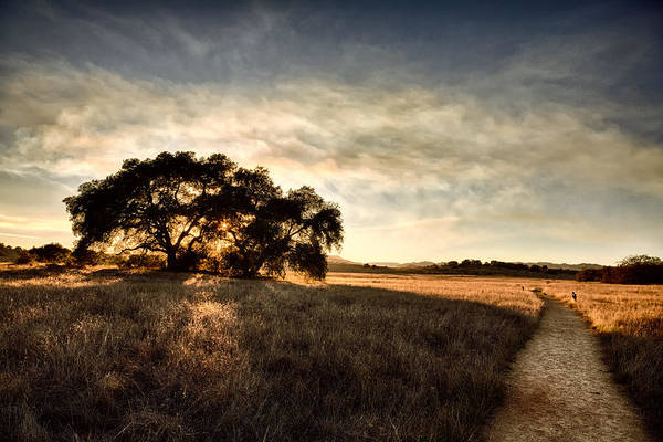 Big Sky Photograph - Two Paths by Peter Tellone