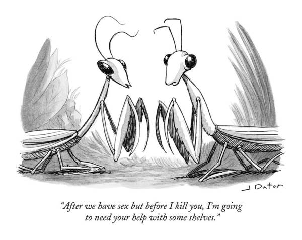 Animal Drawing - Two Praying Mantises Facing Each Other by Joe Dator