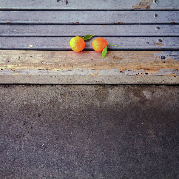 Photograph - Two Tangerines by Sarah Palmer