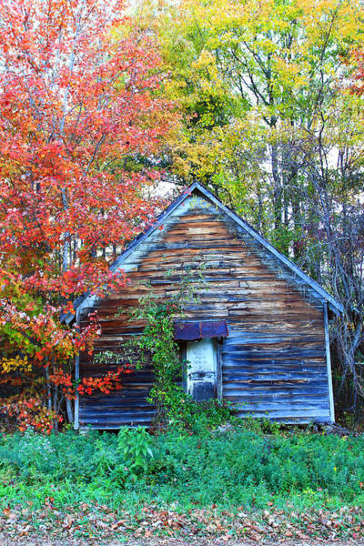 Photograph - Two Tone Shack by Jennifer Robin