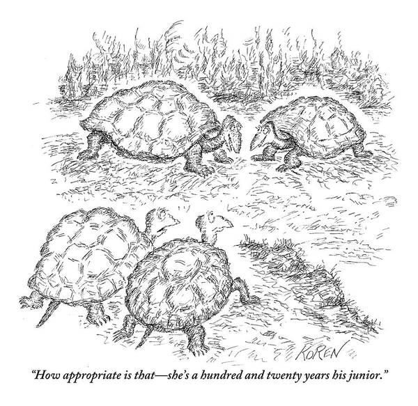 Reptile Drawing - Two Turtles Look On As A Male And Female Turtle by Edward Koren