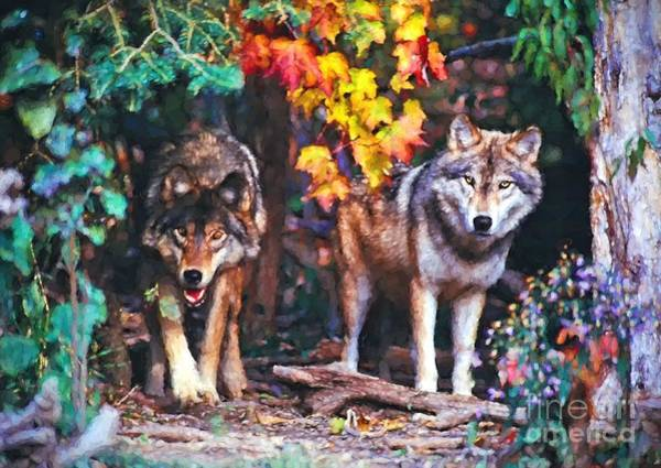Photograph - Two Wolves In The Fall by Les Palenik