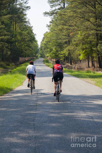 Maryland Wall Art - Photograph - Two Women Cyclists Ride In The Blackwater National Wildlife Refuge Near Cambridge Maryland by William Kuta