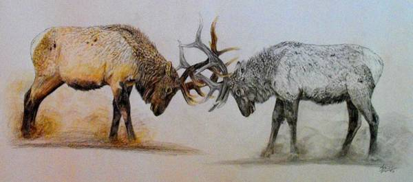 Bugling Drawing - Two Worlds by Maria Friedrich