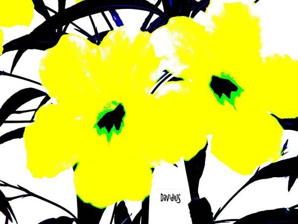 Photograph - Two Yellow Jacks W Logo by David Clark