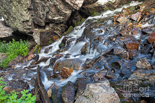 Photograph - Tyndall Creek In Rocky Mountain National Park by Fred Stearns