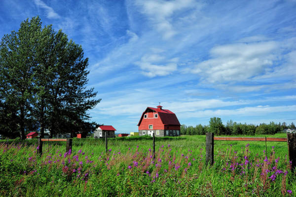 Fireweed Photograph - Typical Colony Home In Palmer Area by Sheila Haddad