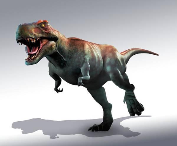 Scavengers Photograph - Tyrannosaurus Rex Artwork by Mark Garlick