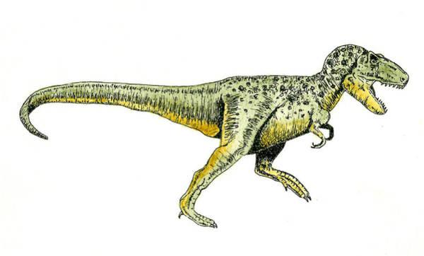 T Wall Art - Painting - Tyrannosaurus Rex by Michael Vigliotti