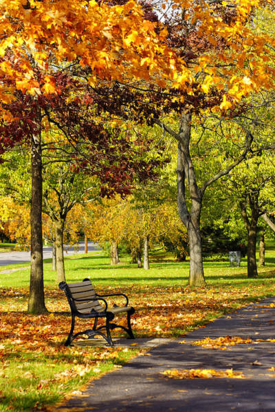 Photograph - Ua In The Fall 2013 by Beth Akerman