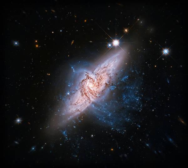 Wall Art - Photograph - Ufo Galaxy by Jennifer Rondinelli Reilly - Fine Art Photography